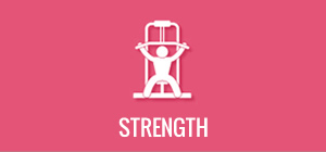 VIVA Fitness - Strength