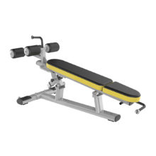 Beast-29 Adjustable Ab Bench