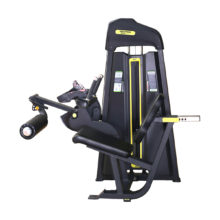 DFT-623 Seated Leg Curl
