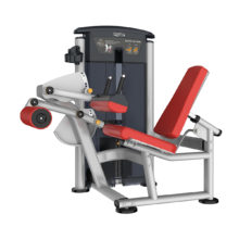 IT9506 Seated Leg Curl